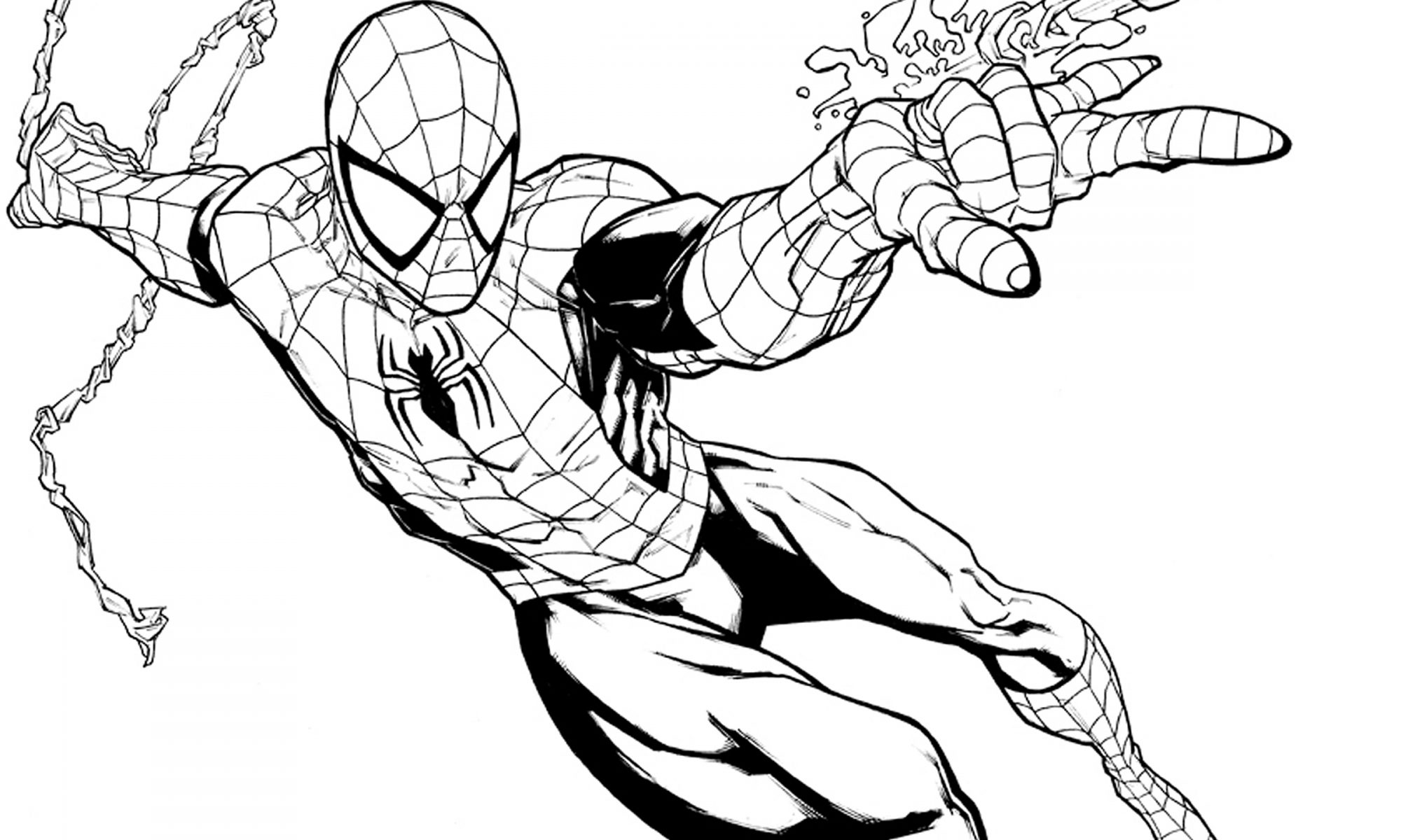 Dibujos de Spiderman para colorear   SPIDER MAN